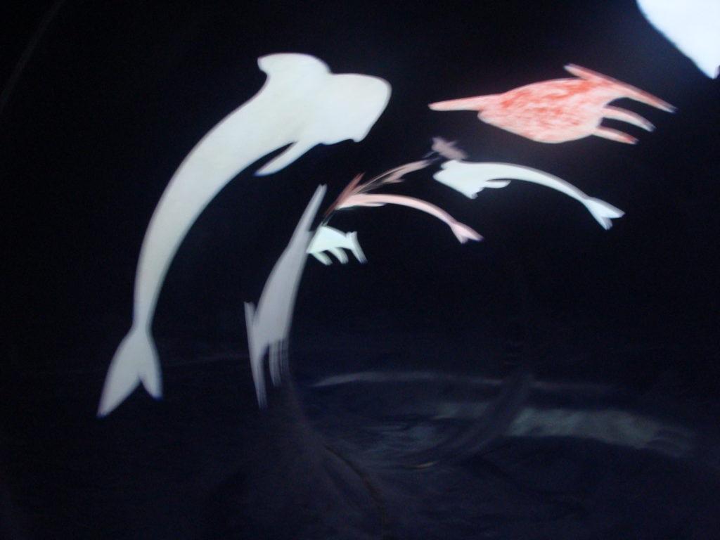 Фигуры животных видимые на просвет