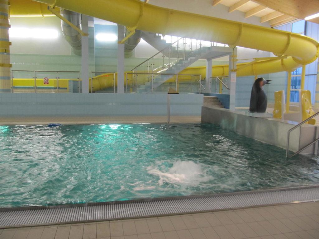 Тестовый запуск бассейна